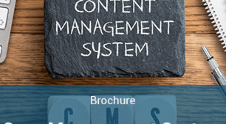 Case Management System (CMS) Brochure